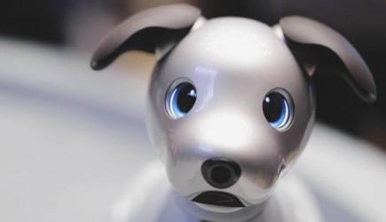 Koronavirüs Japonya'da Robot Satışını Arttırdı