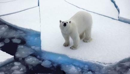 Kuzey Kutbu İki Kat Daha Hızlı Isınıyor