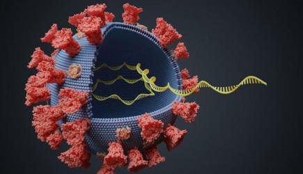 Mutasyonlu Koronavirüsün En Yaygın Görülen Semptomları Açıklandı