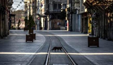 'Sokağa Çıkma Yasakları Yeniden Geliyor' İddiası
