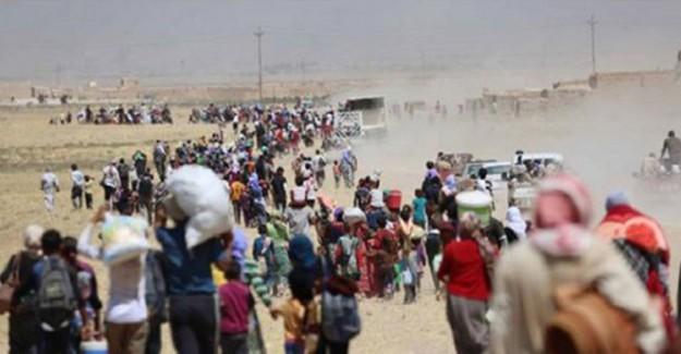 5 Günde 80 Bin Sivil! Türkiye Sınırına Göç Ediyor