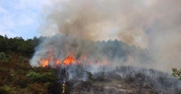 Aydos Ormanlarında Şiddetli Yangın!