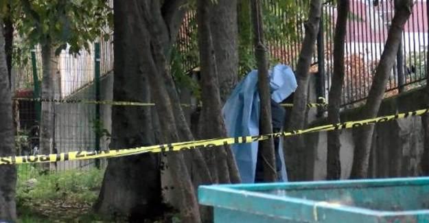 Bahçelievler'de Ağaca Asılıp Öldürüldü