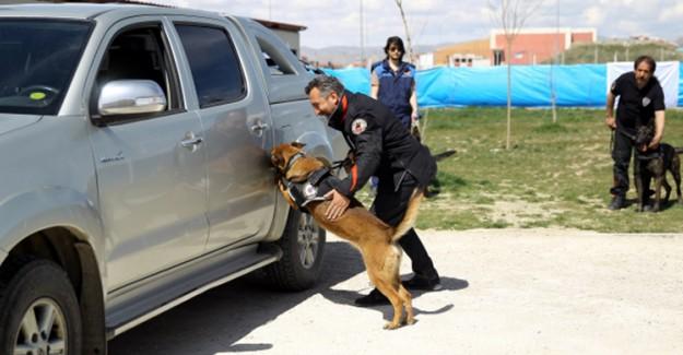 Burdur'da Narkotik Operasyon!