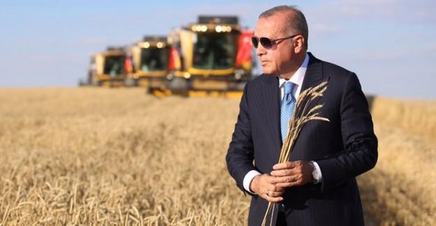 Cumhurbaşkanı Erdoğan, Yerli Elektrikli Traktör Deneme Sürüşünü Gerçekleştirdi