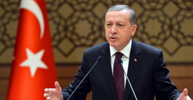 Cumhurbaşkanı Erdoğan'dan Hayvan Hakları Yasası Talimatı