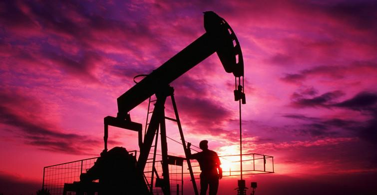 Dünyada Petrol Fiyatlarının Yükselişi Altını Nasıl Etkiledi?
