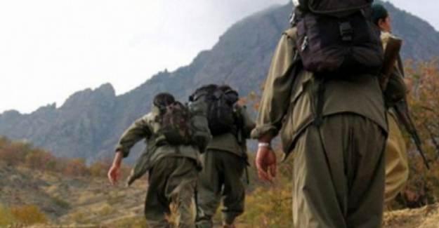 El Bab'da Yakalanan PKK'lı Terörist, 5 ABD'li Tarafından Eğitildiğini İtiraf Etti