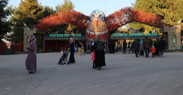 Gaziantep Hayvanat Bahçesi 4,5 Milyon Ziyaretçiyi Ağırladı