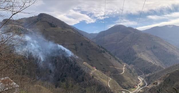 Giresun'da Örtü Yangınlarına Neden Olan 5 Kişi Hakkında Suç Duyurusu