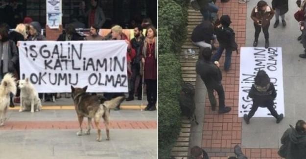HDP, Boğaziçi Üniversitesi'ndeki Terörist Öğrencilere Sahip Çıktı