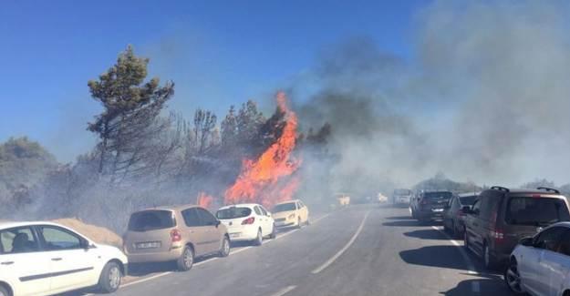 İzmir'de 44 Aracın Hasar Aldığı Orman Yangının Sebebi Ortaya Çıktı