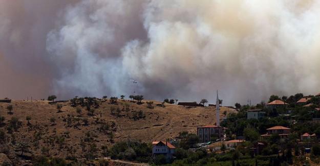 İzmir'in Karabağlar İlçesinde Orman Yangını