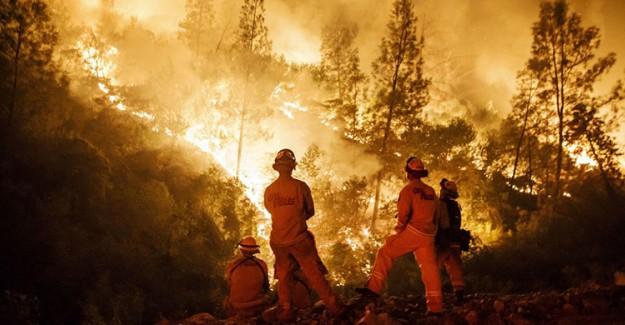 Kaliforniya'daki Yangın Can Almaya Devam Ediyor