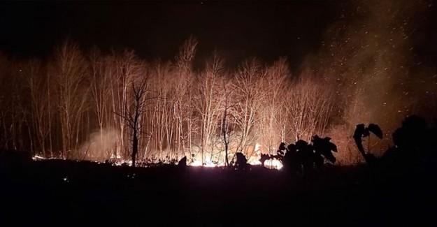 Karadeniz'de Çıkan 58 Orman Yangınından 45'i Kontrol Altına Alındı