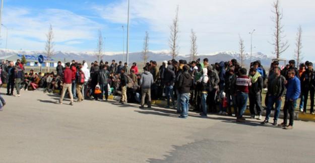 Kırklareli'nde Göçmen Operasyonu