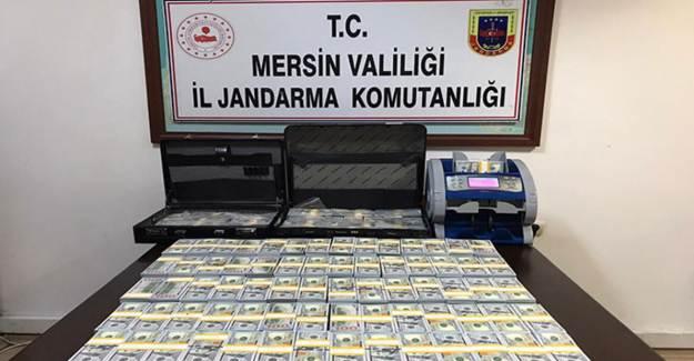 Mersin'de Sahte Dolar Operasyonu
