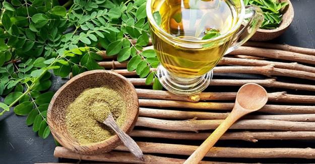 Moringa Çayı Nedir? Faydaları Nelerdir?