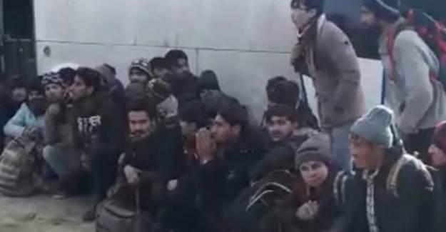 Niğde'de 54 Muhacir Yakalandı