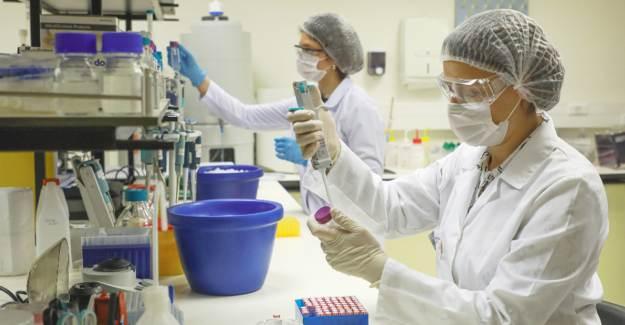 PCR Testlerinde Kullanılan RNA Tabanlı Referans Malzeme Yerli Olarak Üretildi