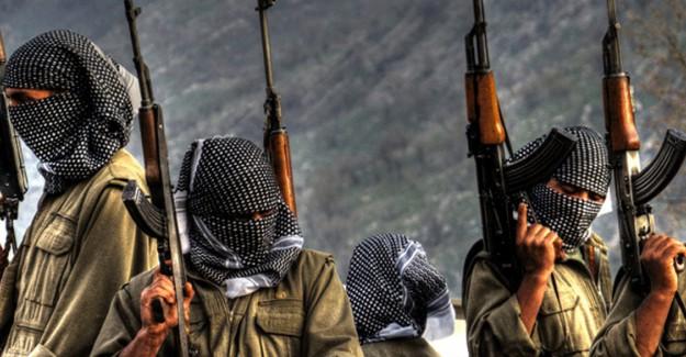 PKK'nın Katlettiği Kürt Kökenli Vatandaşlarımızın Sayısı Açıklandı