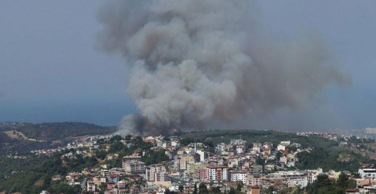 PKK'ya Orman Yakma Emri Veren terörist Etkisiz Hale Getirildi
