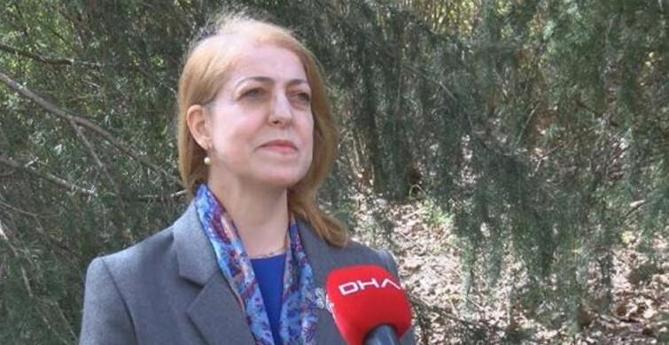 Prof. Dr. Sevinç Asilhan: Bütün Özellikleri Değişecek