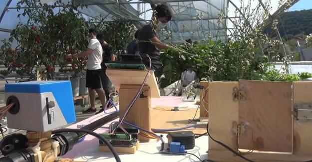 Robotik Sistemle Serada Sebze Meyve Yetiştiriciliği Yapacaklar