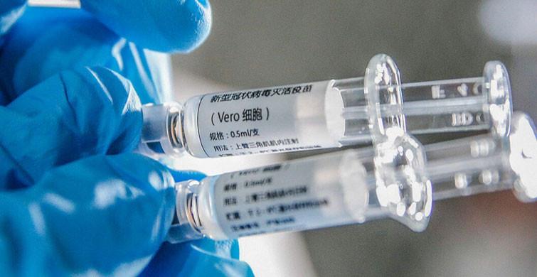 Sinovac Aşısının Sonuçları Açıklandı!