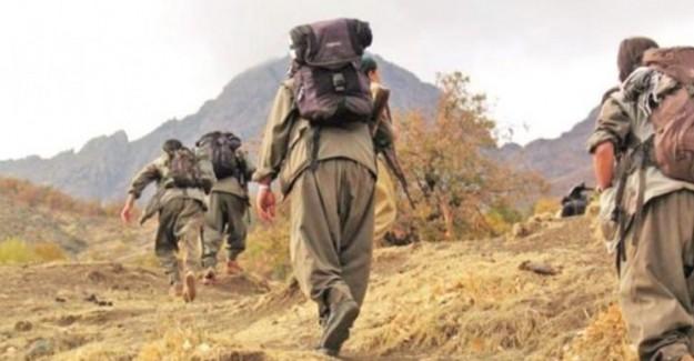 Şırnak'ta Çatışma! Üst Düzey PKK'lı Yaralı Olarak Yakalandı