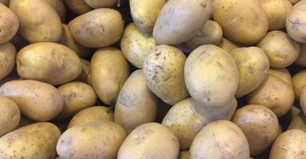 Tonu 500 Doların Altındaki Patates İthalatına Denetim