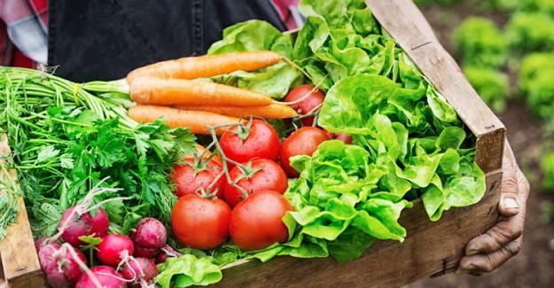 Tüketiciler Sağlıklı Yaşam İçin 'Organik ve Katkısız Ürün' Arıyor