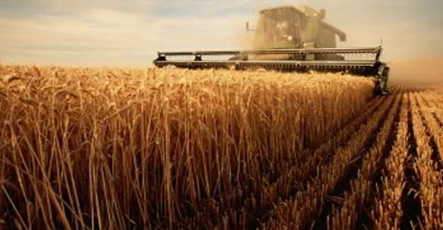 Türkiye, Yeni Tarım Ekonomisine Teknolojiyle Hazırlanıyor!