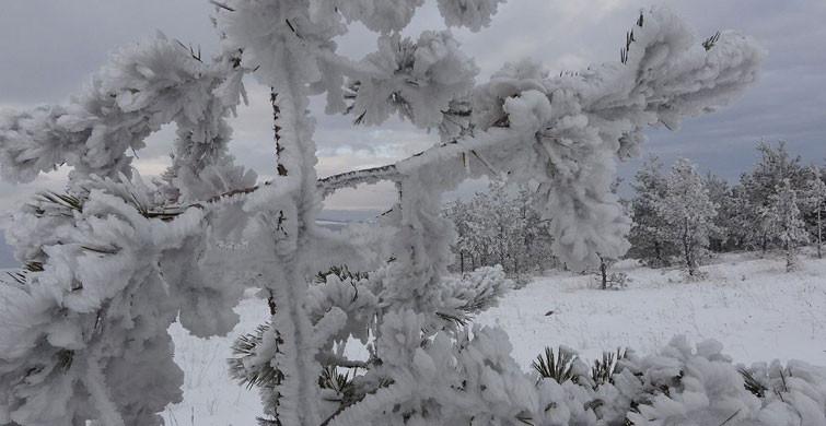 Türkiye'nin En Soğuk İli Eksi 27,1 ile Sivas Oldu