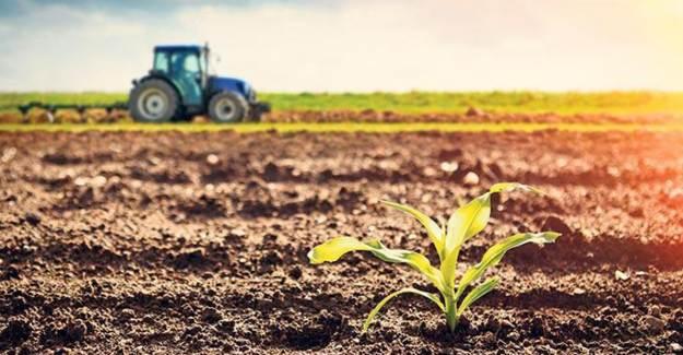 Türkiye'nin Tarımsal Üretimi İlk 2 Çeyrekte Yüzde 4 Büyüdü