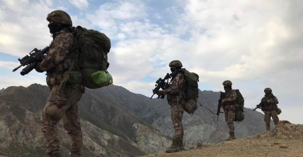 Turuncu ve Gri Kategori'deki Teröristler Etkisiz Hale Getirildi