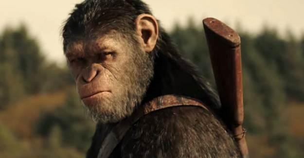 Yeni Bir Maymunlar Cehennemi Serisi Geliyor