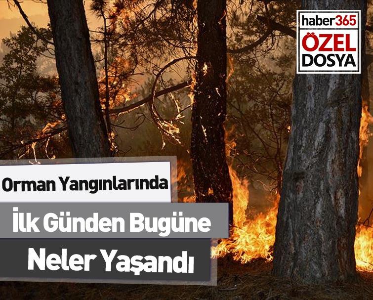 Geçmişten Günümüze Türkiye'nin Orman Yangınlarıyla Mücadelesi