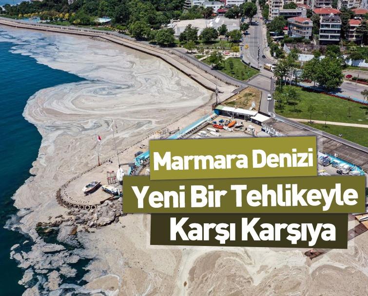 Marmara'ya Müsilajın Ardından Oksijen Azlığı Tehdidi