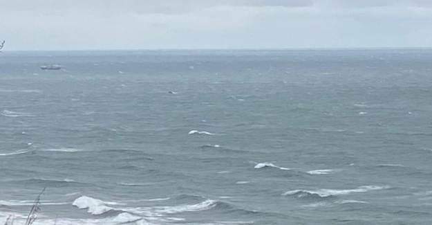 Bartın'da Yük Gemisi Kayboldu!
