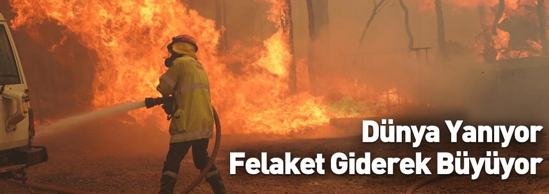 Dünya Yanıyor: İklim Krizi Nedeniyle Birçok Ülkede Yangın Çıktı