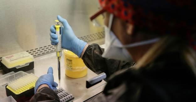 Koronavirüs Nefesten Tespit Edilecek