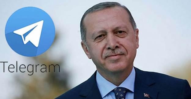 Telegram, Cumhurbaşkanı Erdoğan'ı Dünyaya Örnek Gösterdi