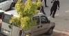 Trafik Kazası Sonrası Kavga Çıktı! Ortalık Karıştı